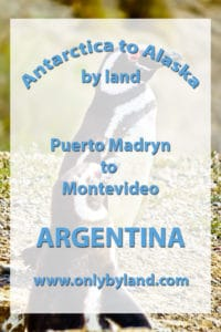 A visit to Puerto Madryn, Argentina including Puerto Madryn city, Punta Tumbo tour (Magellanic penguins), Valdes Peninsula tour, Whale watching, Yellow submarine whale watching tours before taking a cruise ship to Montevideo, Uruguay