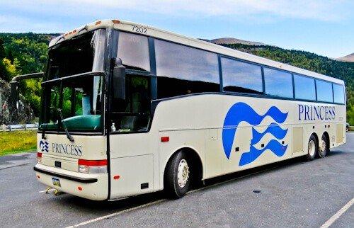 Princess cruise coach to Denali National Park