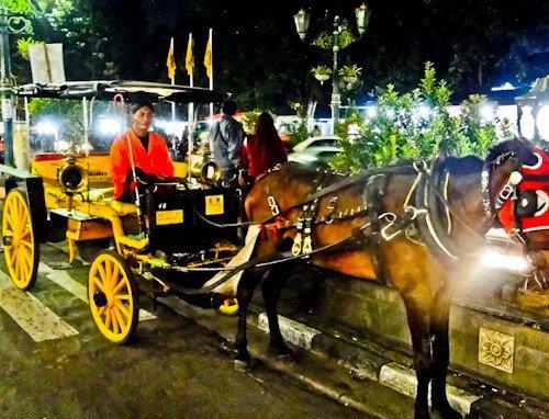 Horse Drawn Carriage, Yogyakarta
