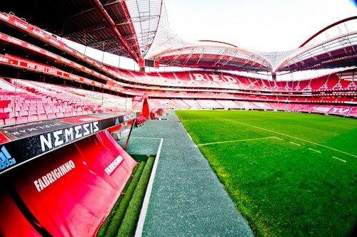 Benfica stadium tour, Estadio da Luz Pitch side