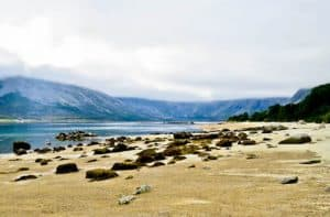 Fjords and Glacier Tours - Tromso