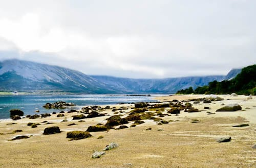 Things to do in Tromso - Fjords and Glacier Tours