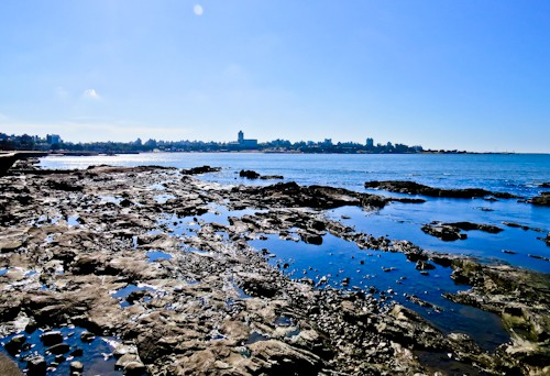 Things to do in Montevideo - Pocitos and La Rambla