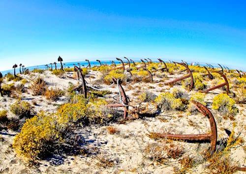 Things to do in Tavira - Barril Beach