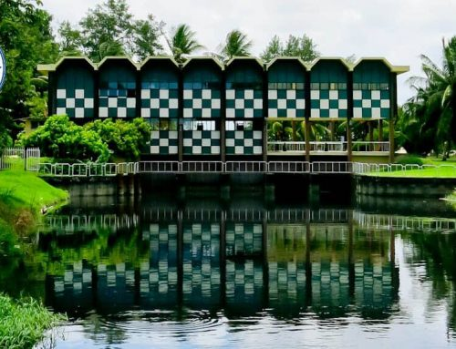 Things to do in Paramaribo Suriname + Trip to Georgetown