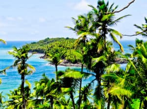 Salvation Island, French Guiana