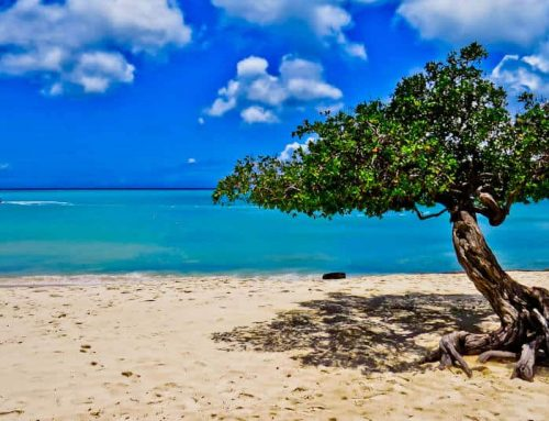 Things to do in Aruba + Ferry to Caracas