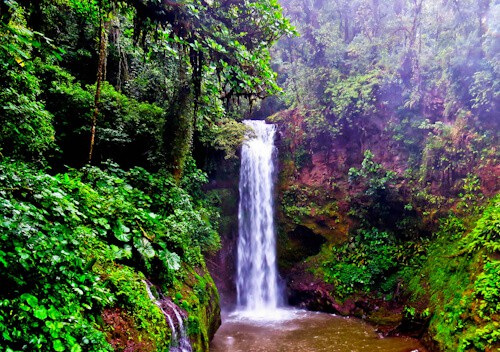 Things to do in San Jose Costa Rica - La Paz Waterfall
