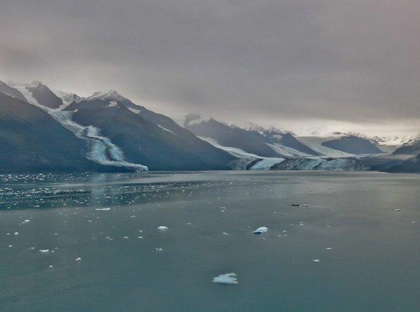 Icebergs in College Fjord Alaska