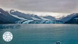 College Fjord Alaska Pictures + Glacier Viewing