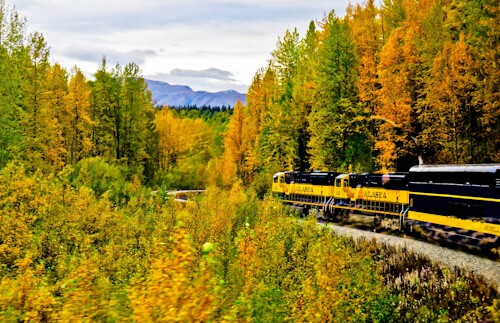 Denali National Park to Fairbanks