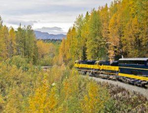 Princess Alaska Rail Service - Denali National Park