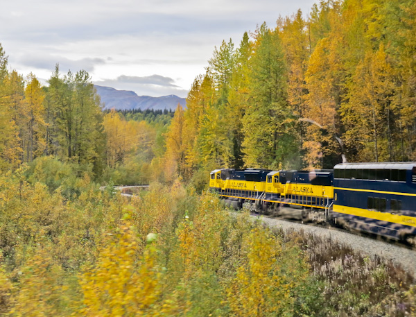 Princess Alaska Rail Service - Denali National Park