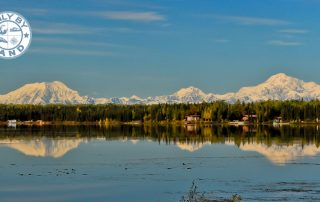 Things to do in Denali National Park Alaska