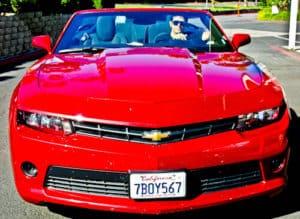 Hire car, Los Angeles to San Francisco
