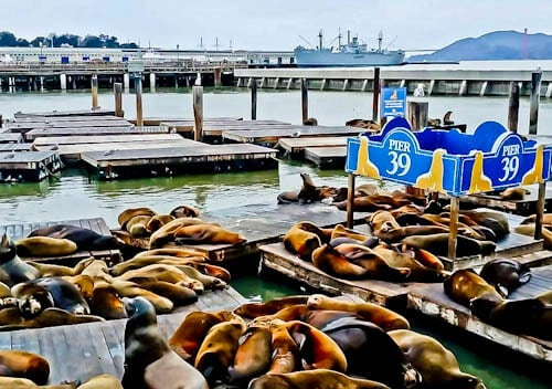 San Francisco Landmarks - Pier 39