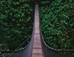 Capilano Suspension Bridge, Vancouver Landmarks