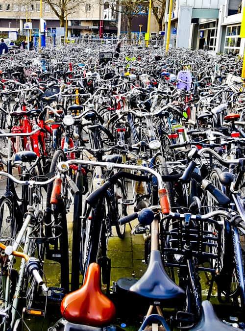Dutch Bikes at Gouda Train Station, Gouda