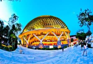 Durian, Singapore