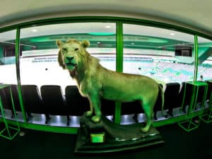 Sporting Lisbon stadium tour - Presidential suite and seats.