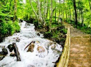 Rila Monastery - A day trip from Sofia - waterfall