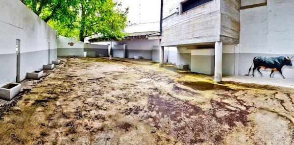 Pamplona Bull Stadium Tour - Plaza de Toros - Bullpen