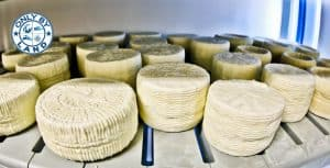 Traditional Cheese Dairy - Lipsi Island Greece