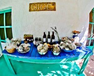 Things to do on Lipsi Island - Greece - Dimitris Farm and Vineyards