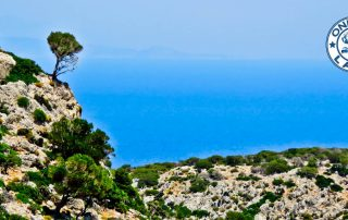 Things to do on Lipsi Island - Greece