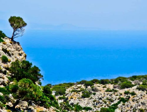 Things to do in Lipsi Island – Greece