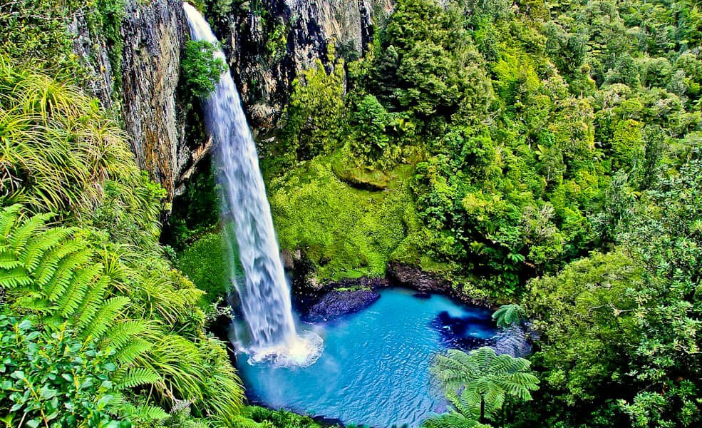 Tips for a Better Road trip to New Zealand With Kids