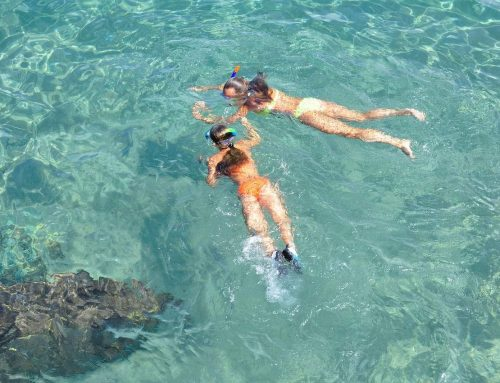 What to See and Do in Malapascua