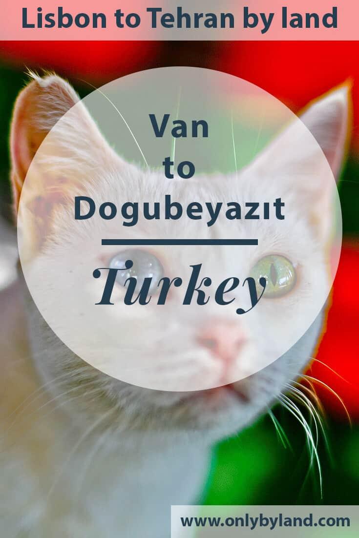 Things to do in Van Turkey