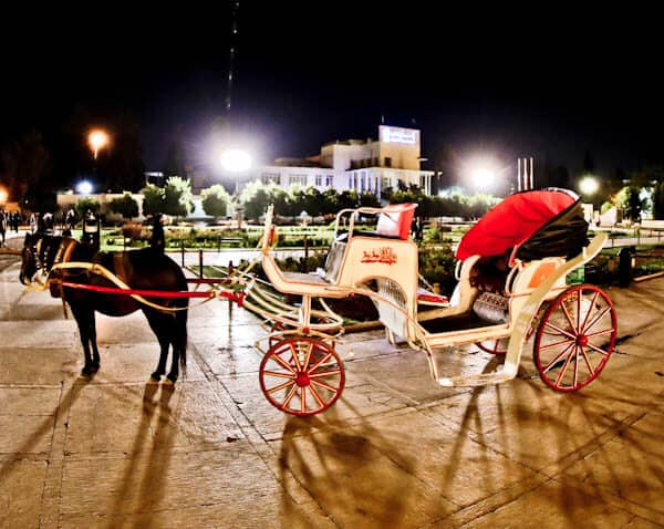 Getting Around Shiraz Iran - Horse Drawn Carriage