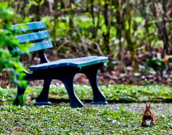 Seating Areas in Herrenhausen Gardens