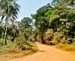 Freetown to Monrovia - Condition of the Road