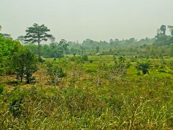 Man to Yamoussoukro by land