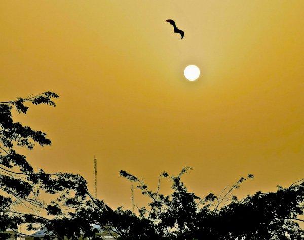 Sunset from Providence Island, Monrovia