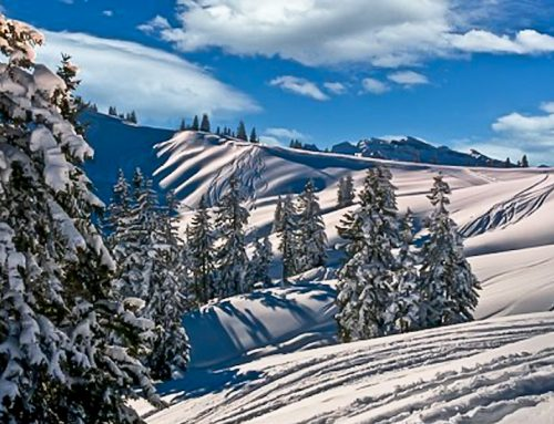 Winter Breaks: All You Need to Know
