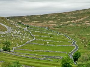 Yorkshire green dales