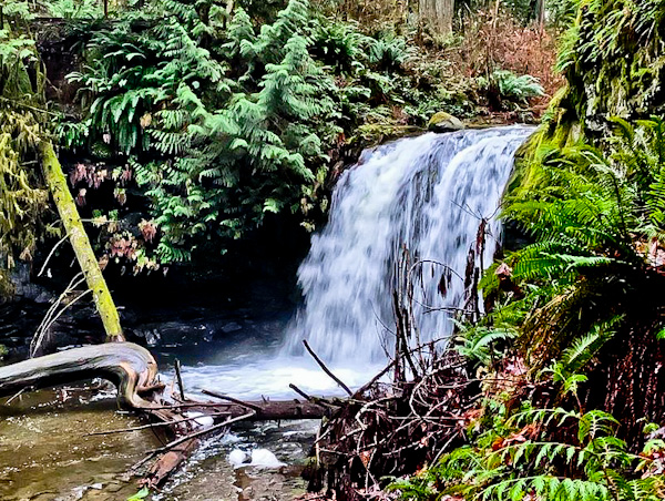 Stocking Creek Waterfall, Vancouver Island