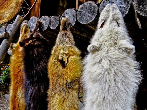 Things to do in Fairbanks - Pioneer Park
