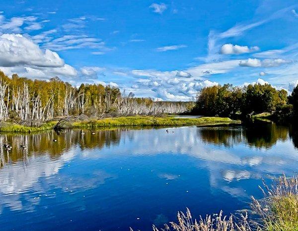 Creamer's Field Migratory Waterfowl Refuge Fairbanks