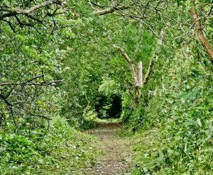 Entering Alston on the Pennine Way