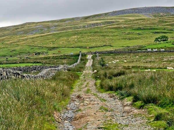 Uphill route from Dufton to Cross Fell