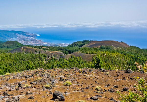 What are the Canary Islands known for? Volcanoes