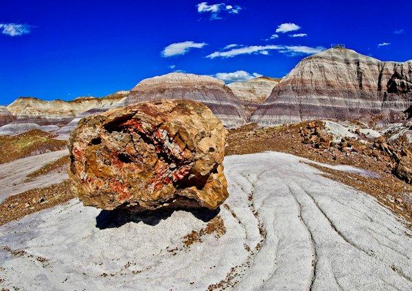 Petrified Forest National Park - Arizona Road Trip
