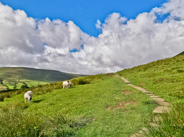 First Miles on the Pennine Way