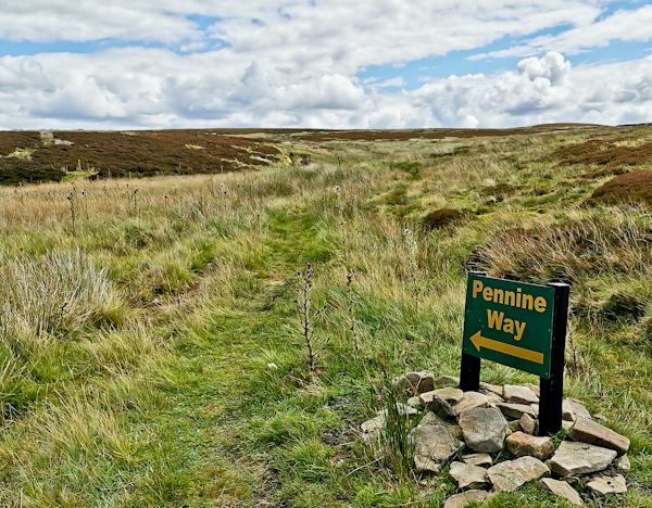 Dryrigg Moss, Pennine Way