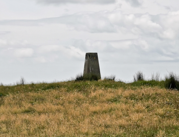 Blenkinsopp Common Trig Point - Pennine Way Stage 12